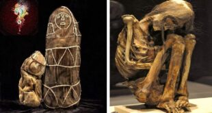 ancient grave peru